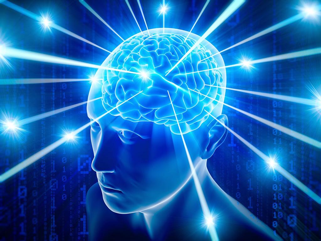 Beyin Nedir ?