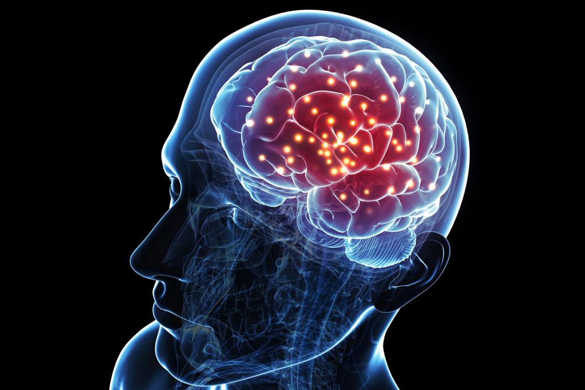 Beynimizin Özellikleri Nelerdir ?