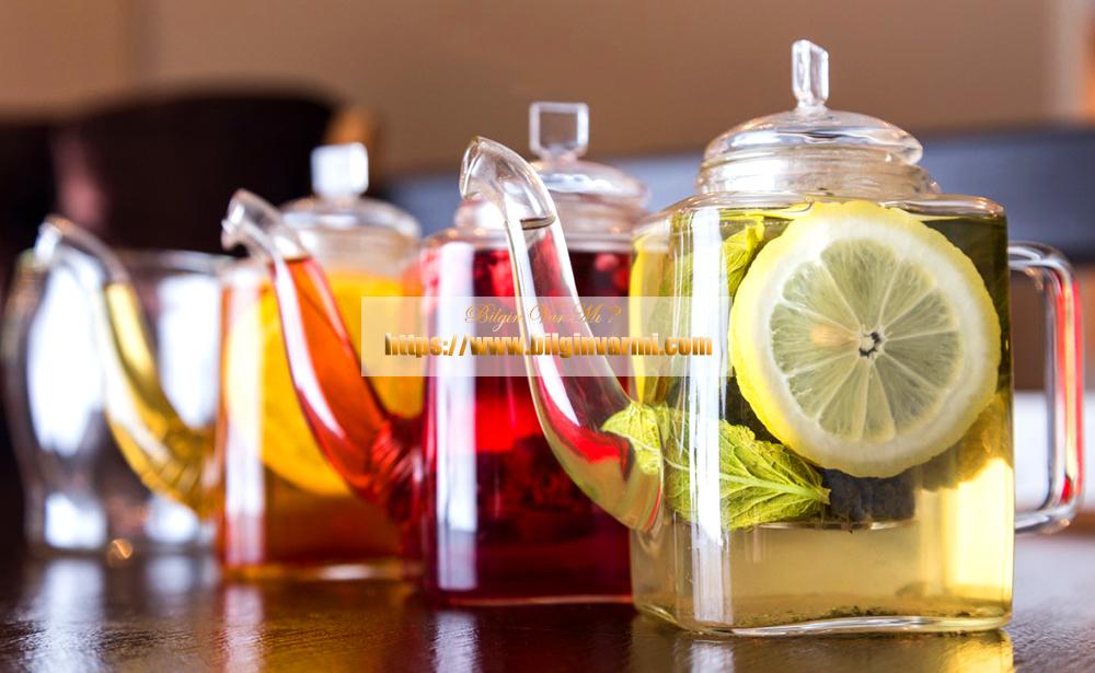 Gaz Giderici Bitki Çayları Hangileridir ?