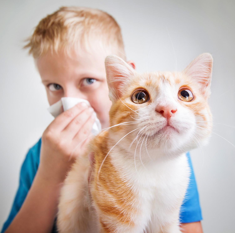 Alerjik Astım Nasıl Geçer ?