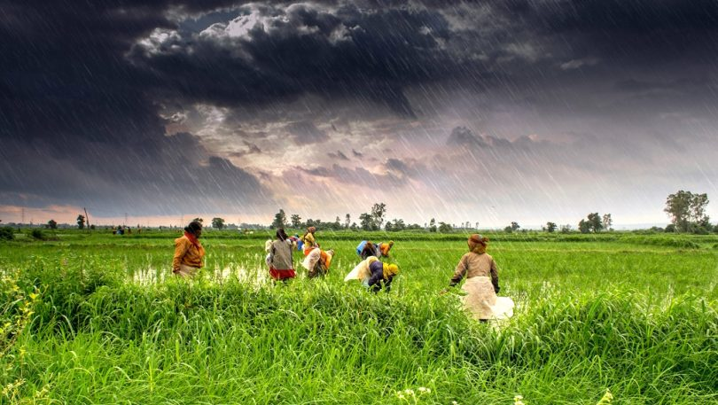 Hindistan İklimi