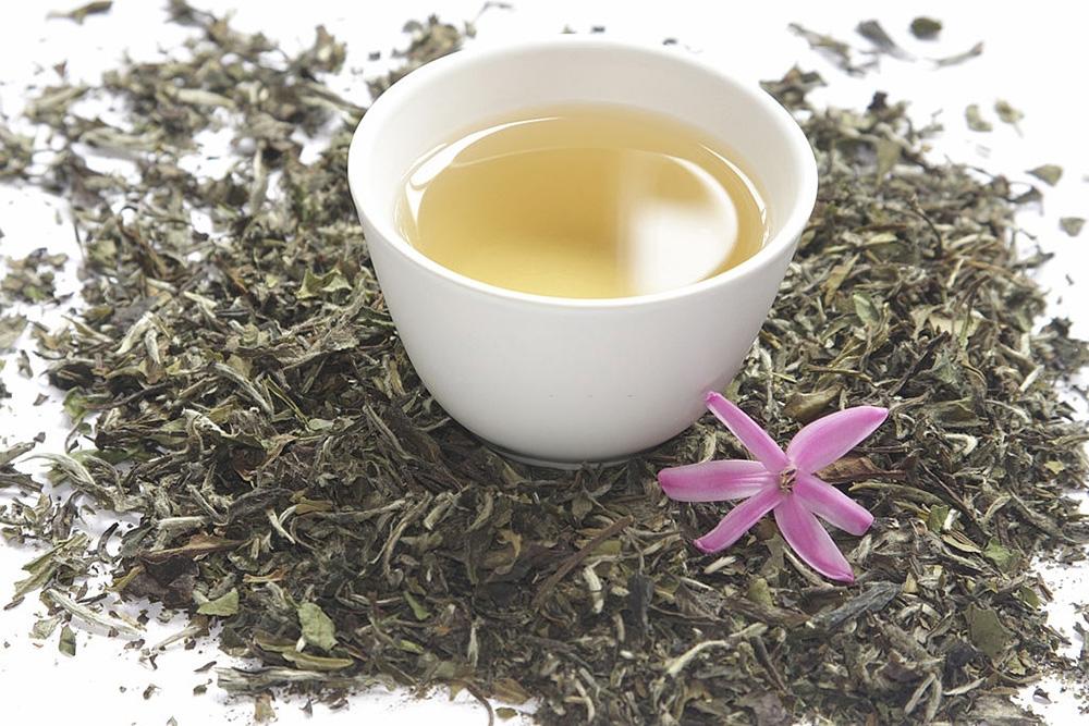 Beyaz Çayın Etkileyici 9 Faydası