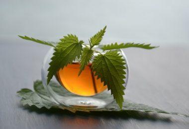 Isırgan Çayı