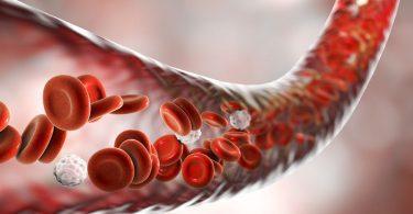Kan Uyuşmazlığı Nedir ?
