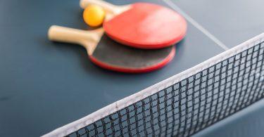 Masa Tenisi Nedir ?
