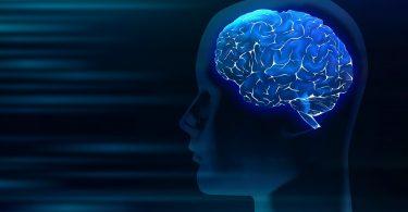 Psikoloji Nedir ? Alt Dalları Neler ?